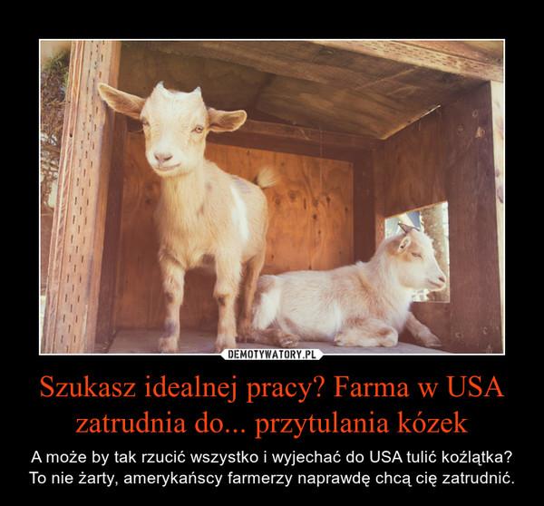 Szukasz idealnej pracy? Farma w USA zatrudnia do... przytulania kózek – A może by tak rzucić wszystko i wyjechać do USA tulić koźlątka? To nie żarty, amerykańscy farmerzy naprawdę chcą cię zatrudnić.