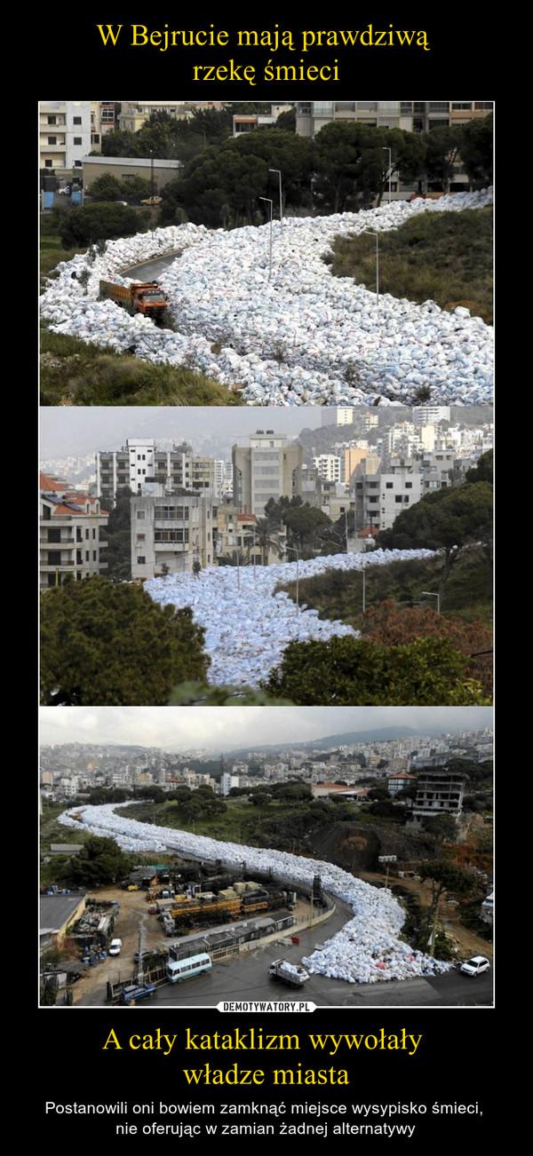 A cały kataklizm wywołały władze miasta – Postanowili oni bowiem zamknąć miejsce wysypisko śmieci, nie oferując w zamian żadnej alternatywy
