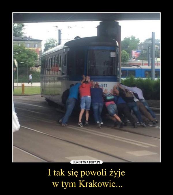 I tak się powoli żyje w tym Krakowie... –