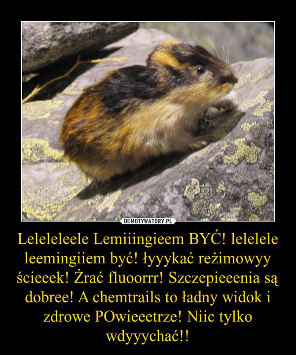 Leleleleele Lemiiingieem BYĆ! lelelele leemingiiem być! łyyykać reżimowyy ścieeek! Żrać fluoorrr! Szczepieeenia są dobree! A chemtrails to ładny widok i zdrowe POwieeetrze! Niic tylko wdyyychać!! –