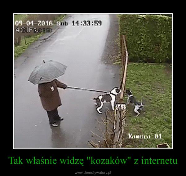 """Tak właśnie widzę """"kozaków"""" z internetu –"""