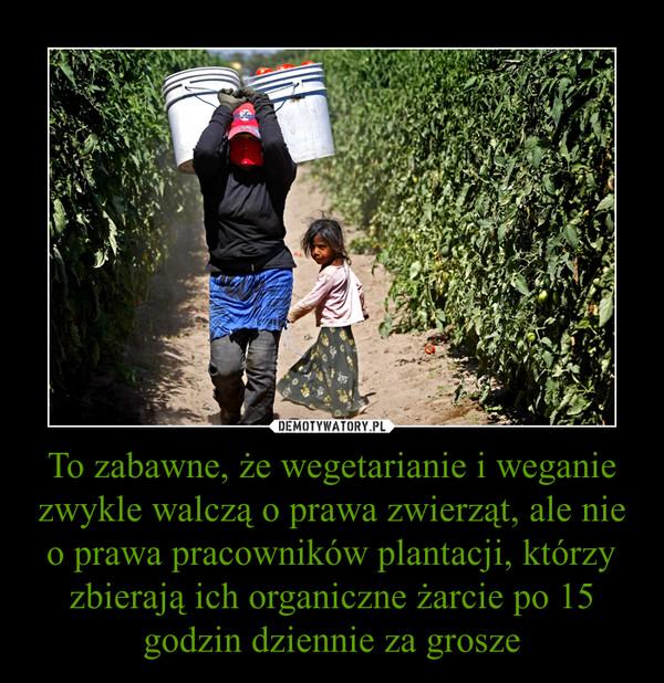 To zabawne, że wegetarianie i weganie zwykle walczą o prawa zwierząt, ale nie o prawa pracowników plantacji, którzy zbierają ich organiczne żarcie po 15 godzin dziennie za grosze –