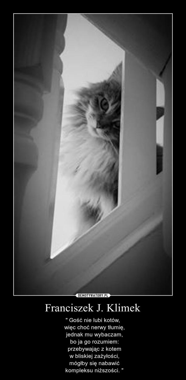 """Franciszek J. Klimek – """" Gość nie lubi kotów,  więc choć nerwy tłumię,  jednak mu wybaczam,  bo ja go rozumiem:  przebywając z kotem  w bliskiej zażyłości,  mógłby się nabawić  kompleksu niższości. """""""