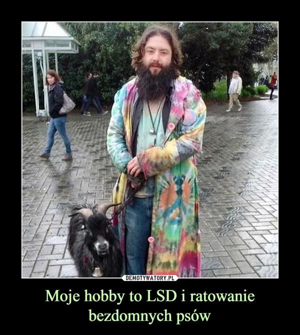 Moje hobby to LSD i ratowaniebezdomnych psów –