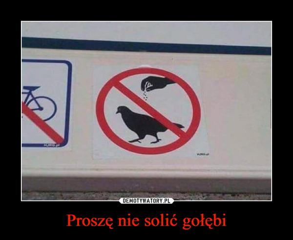 Proszę nie solić gołębi –