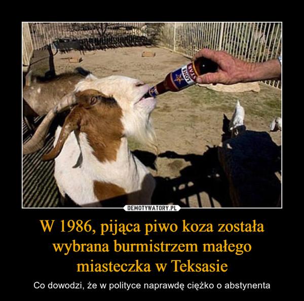 W 1986, pijąca piwo koza została wybrana burmistrzem małego miasteczka w Teksasie – Co dowodzi, że w polityce naprawdę ciężko o abstynenta