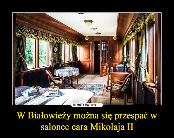 W Białowieży można się przespać w salonce cara Mikołaja II –