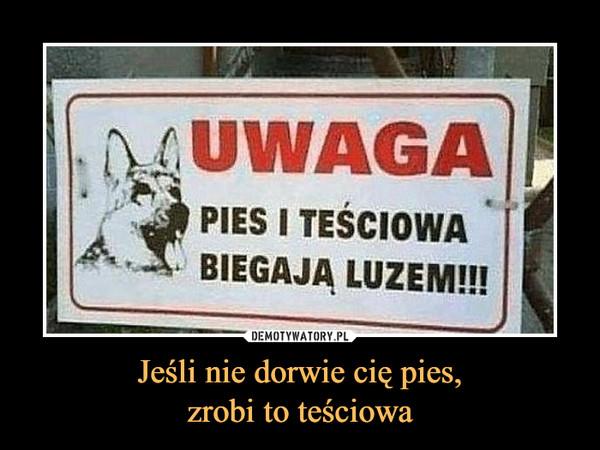 Jeśli nie dorwie cię pies,zrobi to teściowa –  Uwaga, pies i teściowa biegają luzem