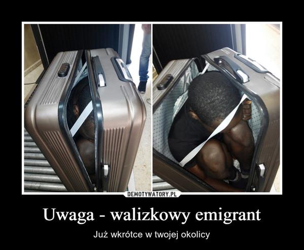 Uwaga - walizkowy emigrant – Już wkrótce w twojej okolicy