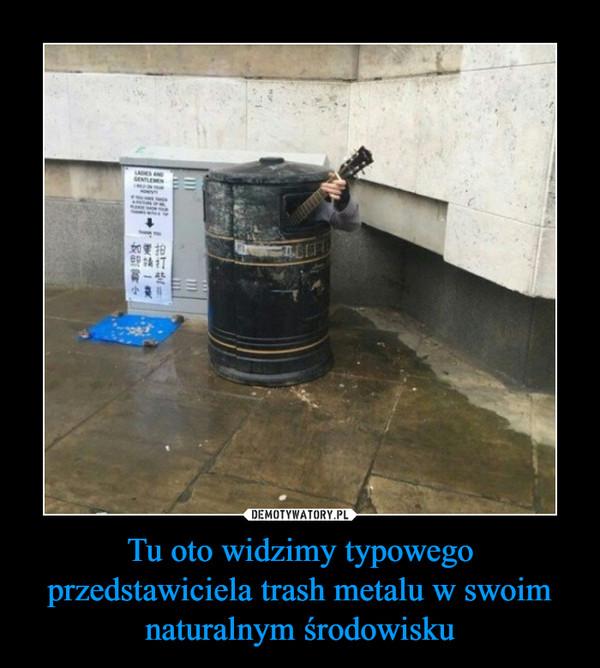 Tu oto widzimy typowego przedstawiciela trash metalu w swoim naturalnym środowisku –