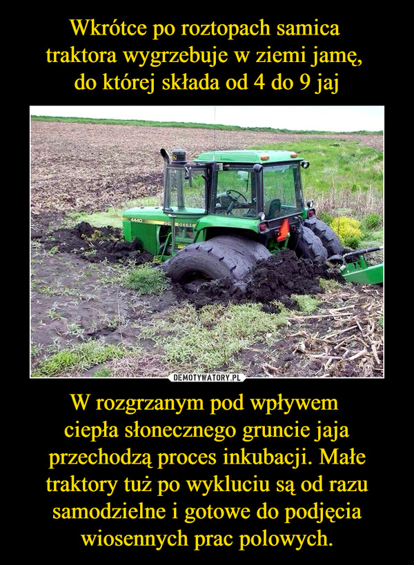 W rozgrzanym pod wpływem ciepła słonecznego gruncie jaja przechodzą proces inkubacji. Małe traktory tuż po wykluciu są od razu samodzielne i gotowe do podjęcia wiosennych prac polowych. –