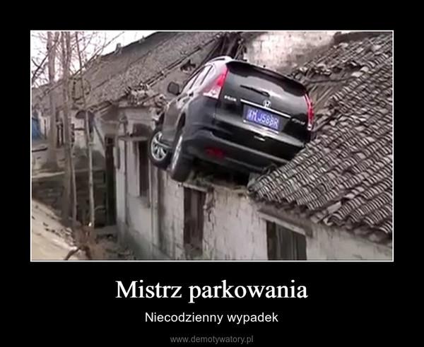 Mistrz parkowania – Niecodzienny wypadek