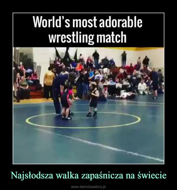 Najsłodsza walka zapaśnicza na świecie –