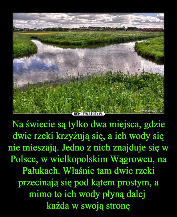 Na świecie są tylko dwa miejsca, gdzie dwie rzeki krzyżują się, a ich wody się nie mieszają. Jedno z nich znajduje się w Polsce, w wielkopolskim Wągrowcu, na Pałukach. Właśnie tam dwie rzeki przecinają się pod kątem prostym, a mimo to ich wody płyną dalej –