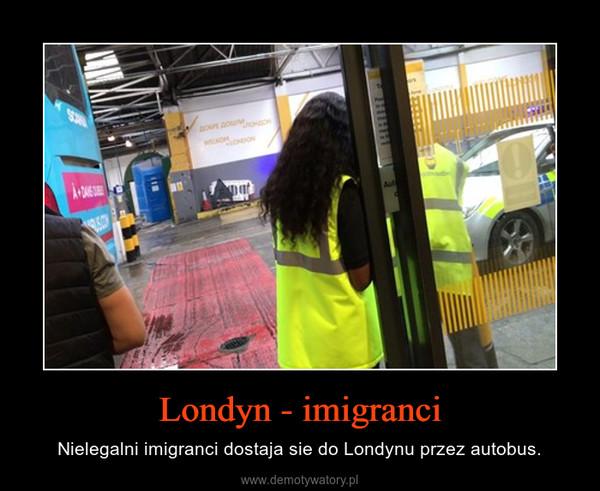 Londyn - imigranci – Nielegalni imigranci dostaja sie do Londynu przez autobus.