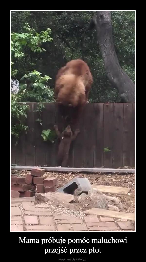 Mama próbuje pomóc maluchowi przejść przez płot –