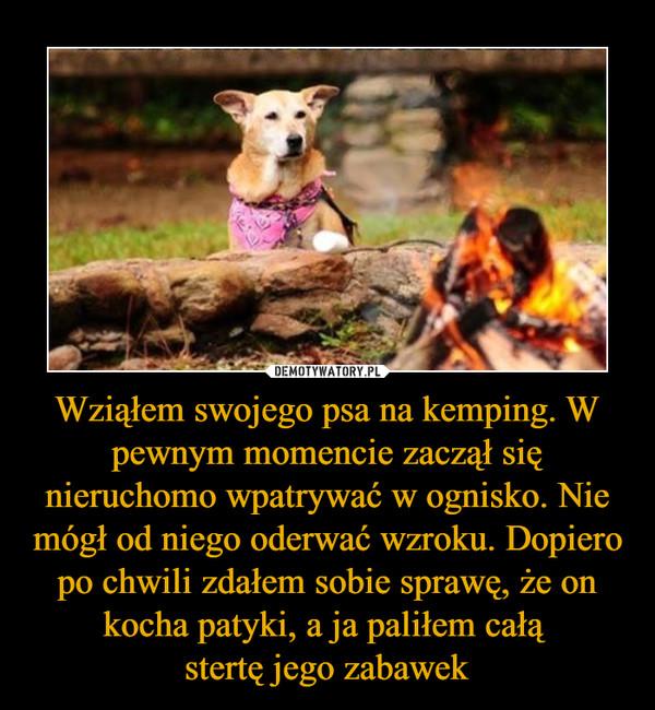 Wziąłem swojego psa na kemping. W pewnym momencie zaczął się nieruchomo wpatrywać w ognisko. Nie mógł od niego oderwać wzroku. Dopiero po chwili zdałem sobie sprawę, że on kocha patyki, a ja paliłem całą stertę jego zabawek –