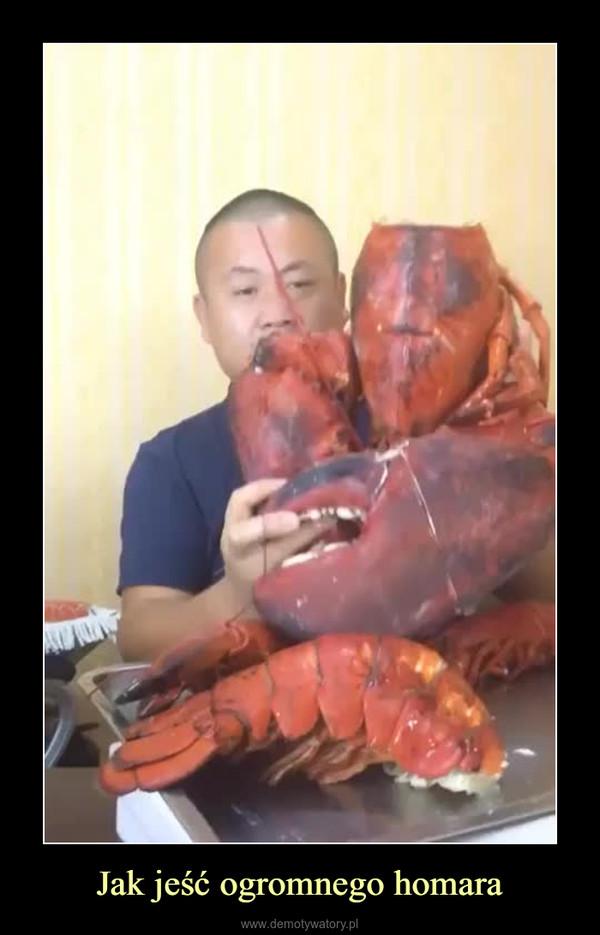 Jak jeść ogromnego homara –