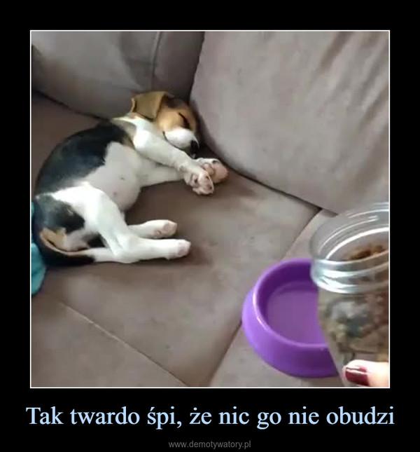 Tak twardo śpi, że nic go nie obudzi –