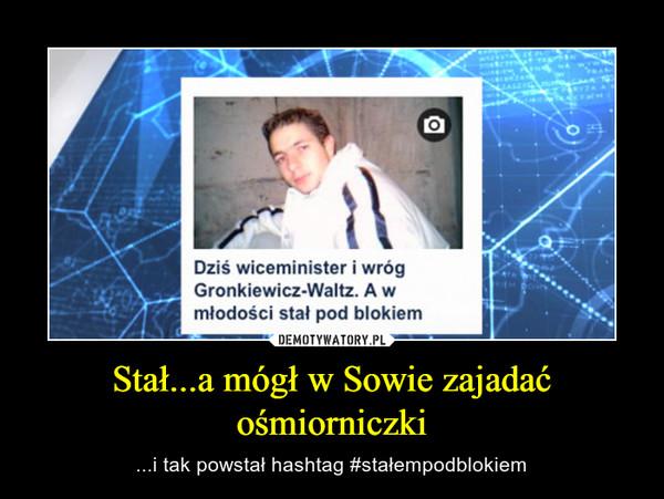 Stał...a mógł w Sowie zajadać ośmiorniczki – ...i tak powstał hashtag #stałempodblokiem