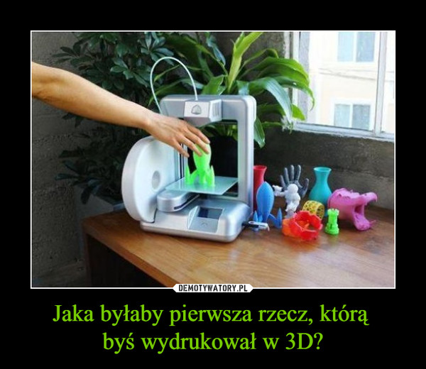 Jaka byłaby pierwsza rzecz, którą byś wydrukował w 3D? –
