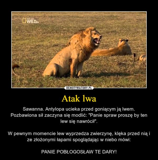 """Atak lwa – Sawanna. Antylopa ucieka przed goniącym ją lwem.Pozbawiona sił zaczyna się modlić: """"Panie spraw proszę by ten lew się nawrócił"""".W pewnym momencie lew wyprzedza zwierzynę, klęka przed nią i ze złożonymi łapami spoglądając w niebo mówi:PANIE POBŁOGOSŁAW TE DARY!"""