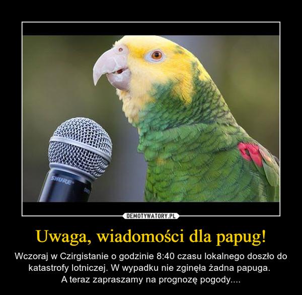 Uwaga, wiadomości dla papug! – Wczoraj w Czirgistanie o godzinie 8:40 czasu lokalnego doszło do katastrofy lotniczej. W wypadku nie zginęła żadna papuga. A teraz zapraszamy na prognozę pogody....