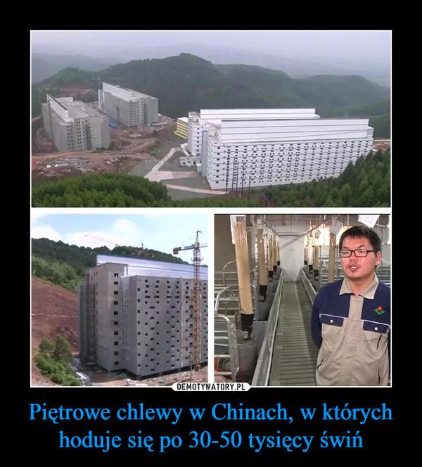 Piętrowe chlewy w Chinach, w których hoduje się po 30-50 tysięcy świń –