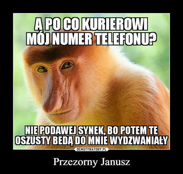 Przezorny Janusz –  A PO CO KURIEROWİMOI NUMER TELEFONU?NIE PODAWEJ SYNEK, BO POTEM TEOSZUSTY BĘDĄ DO MNIE WYDZWANIAŁY