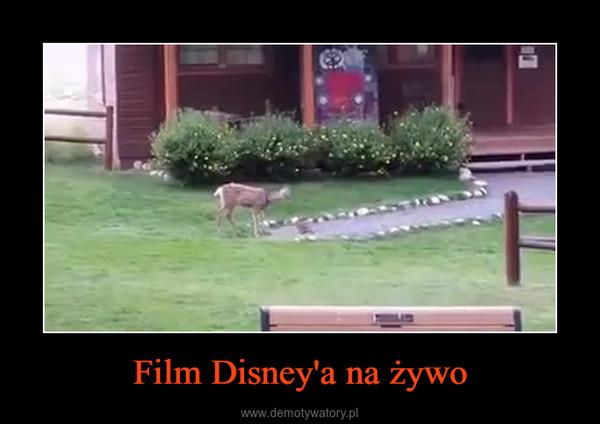 Film Disney'a na żywo –