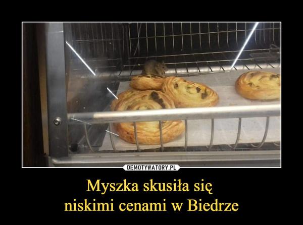 Myszka skusiła się niskimi cenami w Biedrze –
