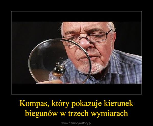 Kompas, który pokazuje kierunek biegunów w trzech wymiarach –