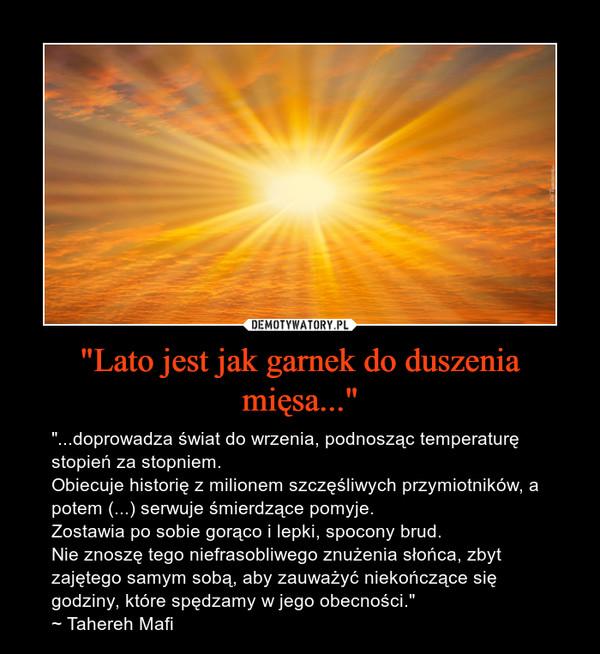 """""""Lato jest jak garnek do duszenia mięsa..."""" – """"...doprowadza świat do wrzenia, podnosząc temperaturę stopień za stopniem. Obiecuje historię z milionem szczęśliwych przymiotników, a potem (...) serwuje śmierdzące pomyje. Zostawia po sobie gorąco i lepki, spocony brud.Nie znoszę tego niefrasobliwego znużenia słońca, zbyt zajętego samym sobą, aby zauważyć niekończące się godziny, które spędzamy w jego obecności.""""~ Tahereh Mafi"""