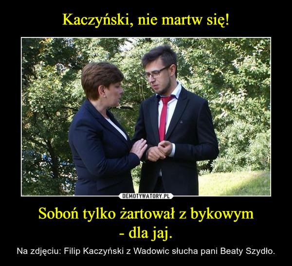 Soboń tylko żartował z bykowym- dla jaj. – Na zdjęciu: Filip Kaczyński z Wadowic słucha pani Beaty Szydło.