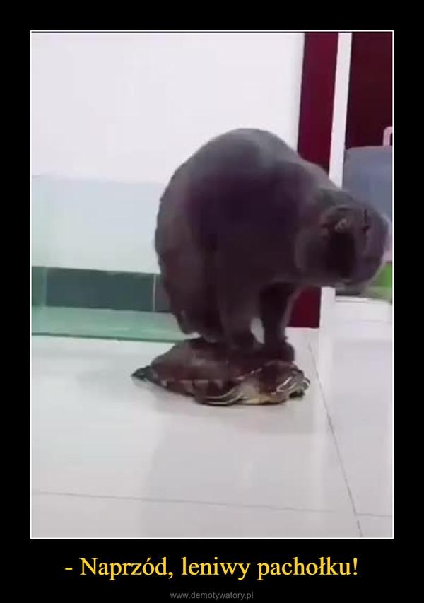 - Naprzód, leniwy pachołku! –