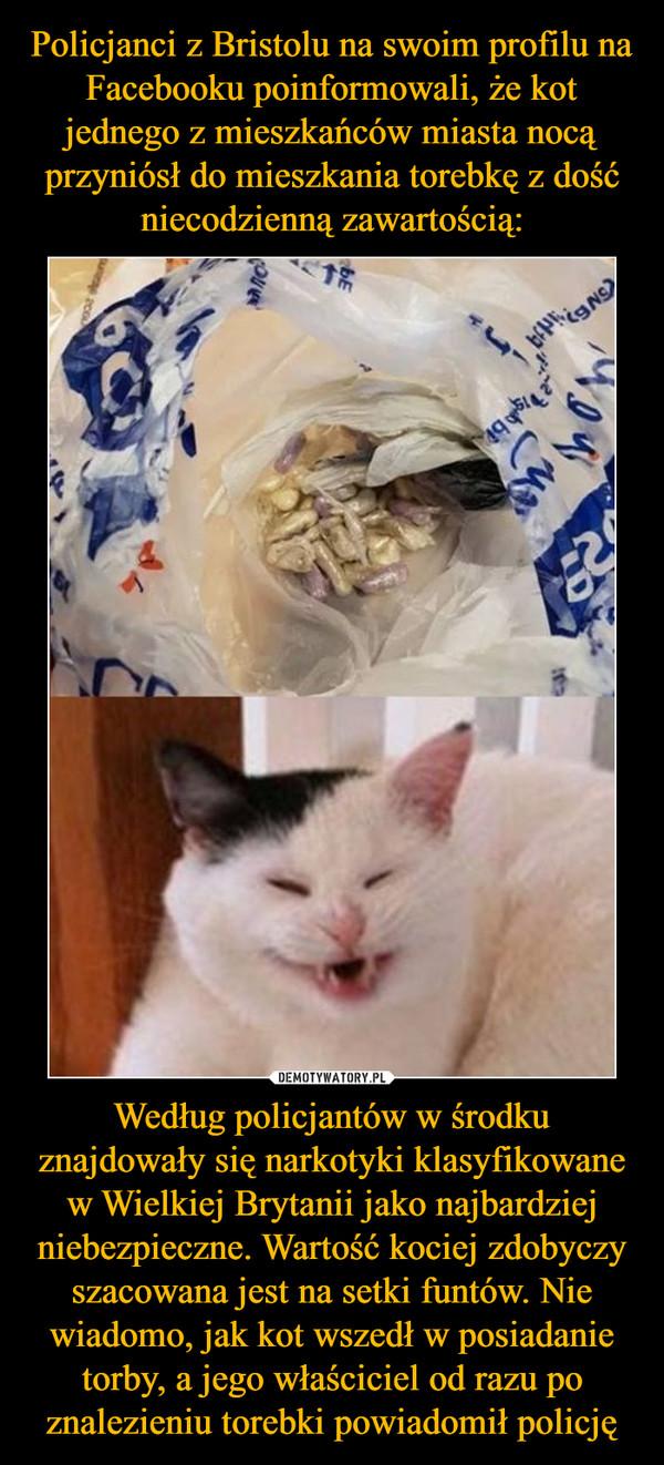 Według policjantów w środku znajdowały się narkotyki klasyfikowane w Wielkiej Brytanii jako najbardziej niebezpieczne. Wartość kociej zdobyczy szacowana jest na setki funtów. Nie wiadomo, jak kot wszedł w posiadanie torby, a jego właściciel od razu po znalezieniu torebki powiadomił policję –