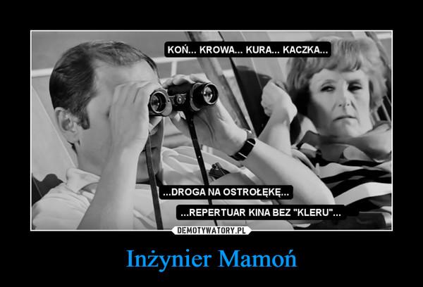 Inżynier Mamoń –