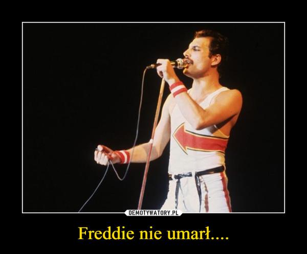 Freddie nie umarł.... –