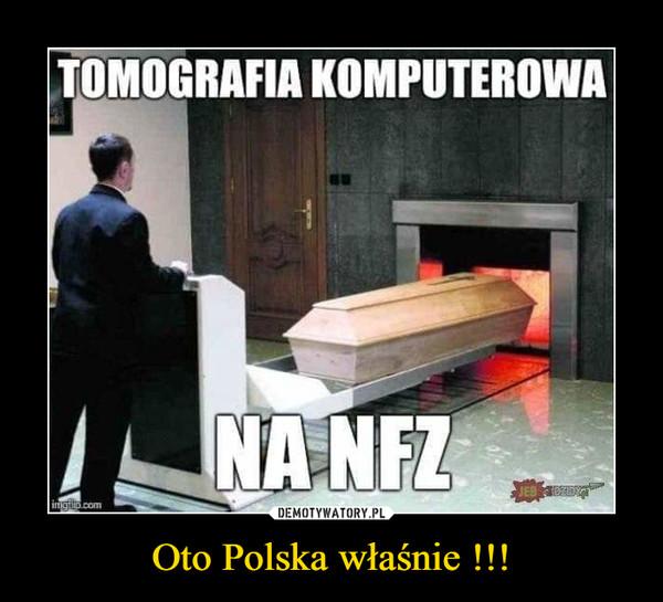 Oto Polska właśnie !!! –