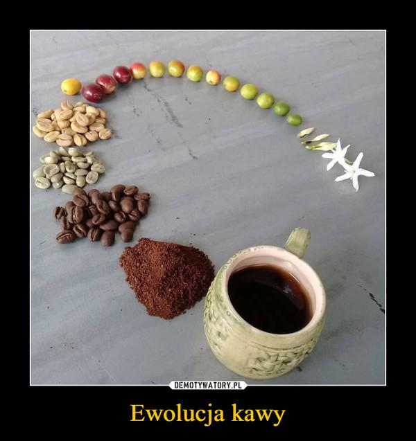 Ewolucja kawy –