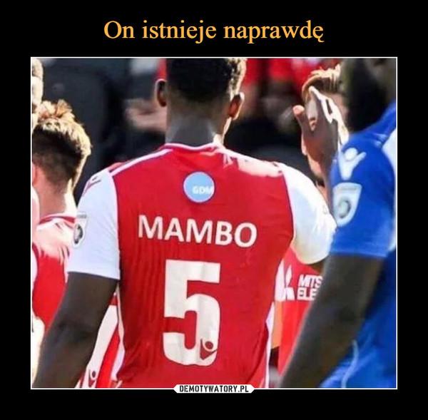 –  MAMBO 5