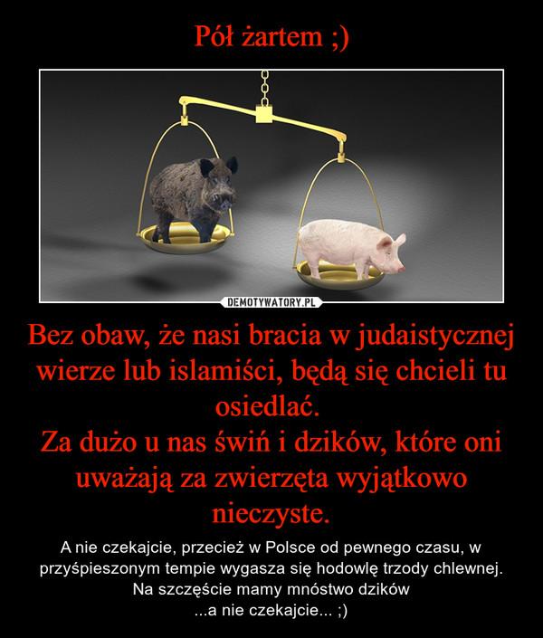 Bez obaw, że nasi bracia w judaistycznej wierze lub islamiści, będą się chcieli tu osiedlać. Za dużo u nas świń i dzików, które oni uważają za zwierzęta wyjątkowo nieczyste. – A nie czekajcie, przecież w Polsce od pewnego czasu, w przyśpieszonym tempie wygasza się hodowlę trzody chlewnej.Na szczęście mamy mnóstwo dzików...a nie czekajcie... ;)