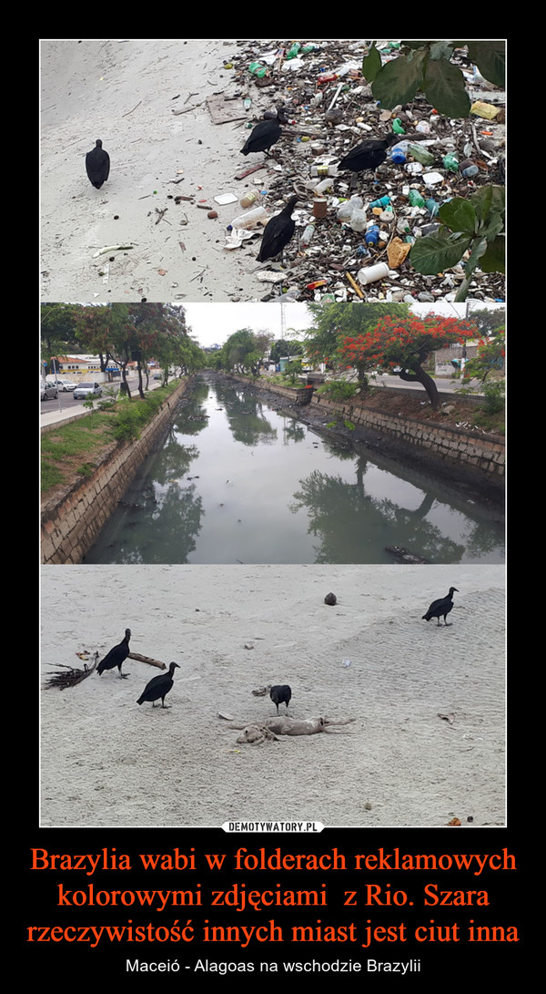 Brazylia wabi w folderach reklamowych kolorowymi zdjęciami  z Rio. Szara rzeczywistość innych miast jest ciut inna – Maceió - Alagoas na wschodzie Brazylii