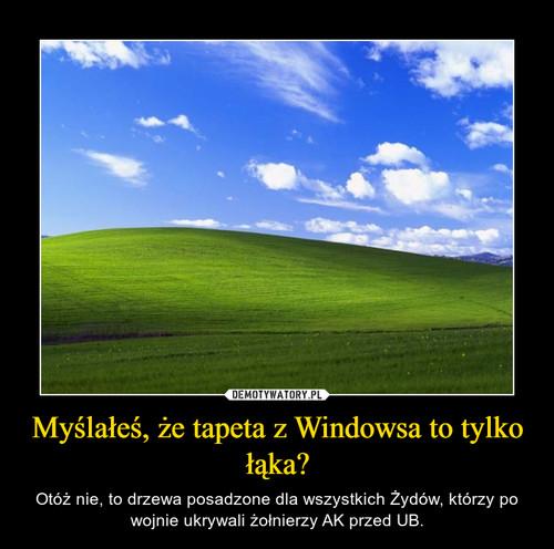 Myślałeś, że tapeta z Windowsa to tylko łąka?