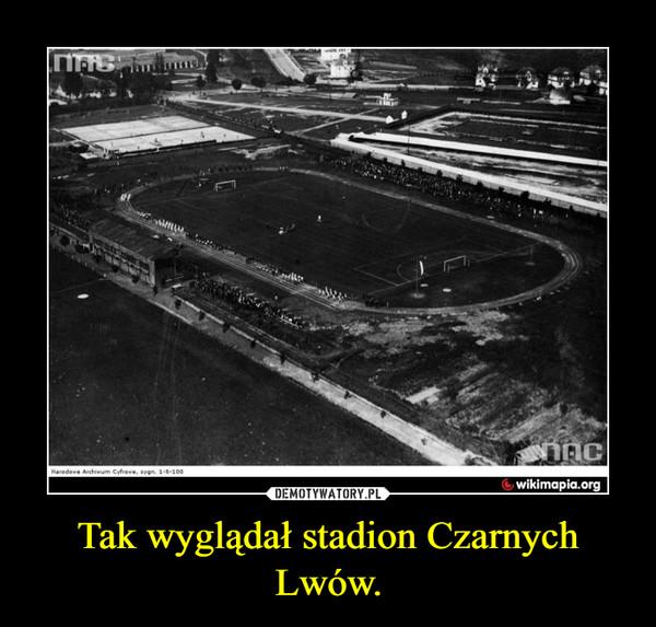 Tak wyglądał stadion Czarnych Lwów. –