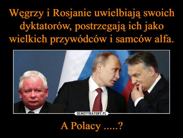 A Polacy .....? –