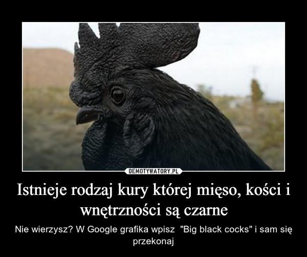 """Istnieje rodzaj kury której mięso, kości i wnętrzności są czarne – Nie wierzysz? W Google grafika wpisz  """"Big black cocks"""" i sam się przekonaj"""