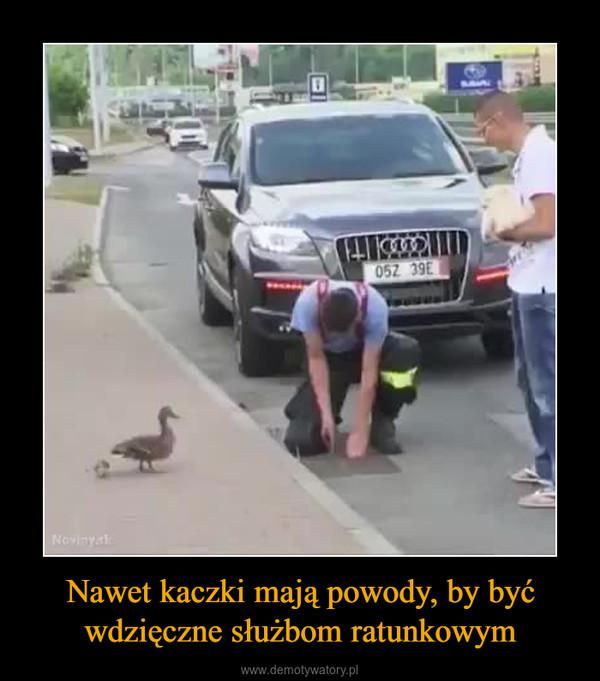 Nawet kaczki mają powody, by być wdzięczne służbom ratunkowym –