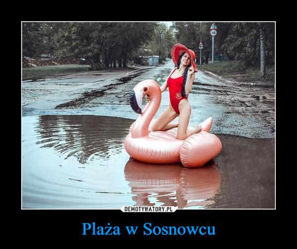 Plaża w Sosnowcu –