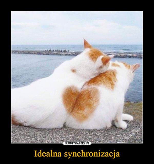 Idealna synchronizacja –